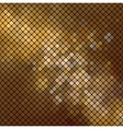dolden mosaic vector image vector image