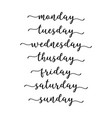 hand lettered days week calligraphy words vector image vector image