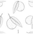 lemon hand drawn outline sketch as seamless vector image vector image