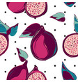 modern botanical pomegranate fruit surface design vector image