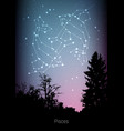 pisces zodiac constellations sign with forest vector image