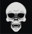 Skulls Face vector image vector image
