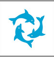 three dolphins form a circle vector image