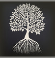 tree with root system silhouette isolated on dark vector image vector image