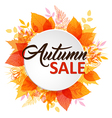 Abstract autumn banner with leaves vector image vector image