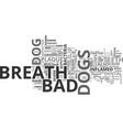 bad breath dog text word cloud concept vector image vector image