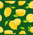 lemon and different slices on dark background vector image vector image