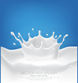 milk splash with splashes isolated on a blue vector image vector image
