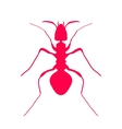 Red silhouette of ant logo design vector image