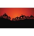 Silhouette of Halloween pumpkins vector image vector image