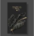 tropic banana leaf black and gold banner vector image vector image