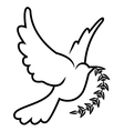 symbol of dove olive branch vector image