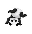 funny panda standing upside down cute black and vector image vector image