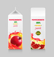 pomegranate juice cardboard package box vector image vector image