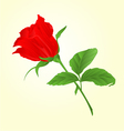 Rosebud red rose twig with leaves vector image vector image