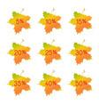 autumn discount elements - maple leaves vector image