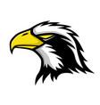bald eagle sign vector image vector image