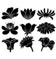 Black floral designs vector image vector image
