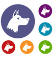 doberman dog icons set vector image vector image