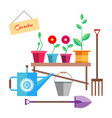 flowers and a seedling in a pot are on the bench vector image