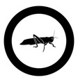 grasshoper icon black color in circle vector image vector image