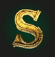 s golden letter vector image