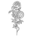 Twisted snake and rose flower