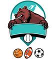 bear mascot vector image vector image