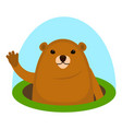 cute groundhog icon flat style vector image