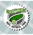 Natural Food 8 vector image vector image