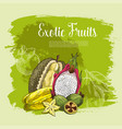 poster of exotic fruits durian or carambola vector image vector image