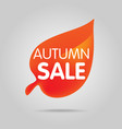 special offer sale orange tag isolated vector image