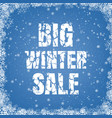 winter promotional sale blue background vector image vector image