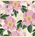 background with bouquets pink peonies vector image vector image