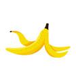 banana peel cartoon vector image