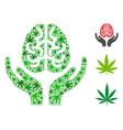 brain care hands collage of weed leaves vector image vector image