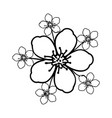cherry blossom flower floral hand drawn design vector image vector image