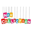 colorful hanging cardboard Tags - new vector image vector image