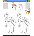 drawing and coloring worksheet with flamingo bird vector image