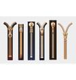 golden zippers metal and plastic fasteners vector image vector image