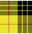 Macleod tartan kilt fabric texture seamless vector image vector image