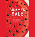 summer sale banner with watermelon background vector image