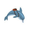 dolphin swimming with backpack cartoon sea animal vector image vector image