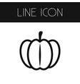 isolated pumpkin outline gourd element can vector image