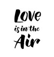 love is in air hand drawn text calligraphy vector image vector image