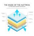 mattress anatomy vector image