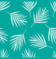 palm leaf pattern vector image