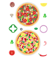 pizza and components isolated on white background vector image vector image