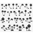 set solar palm beach vector image
