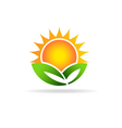 Sun eco plant image Concept of ecology green vector image